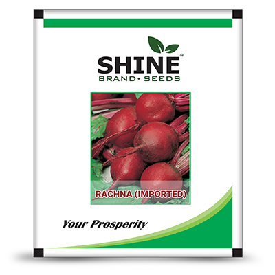 Beet Root Important - Rachna (500 GM)