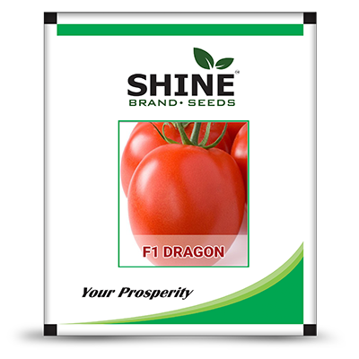 Tomato F1 Dragon - Tamatar Seeds (10 GM)