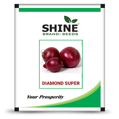 Onion-Diamond Super - Pyaj Seeds (500 GM)